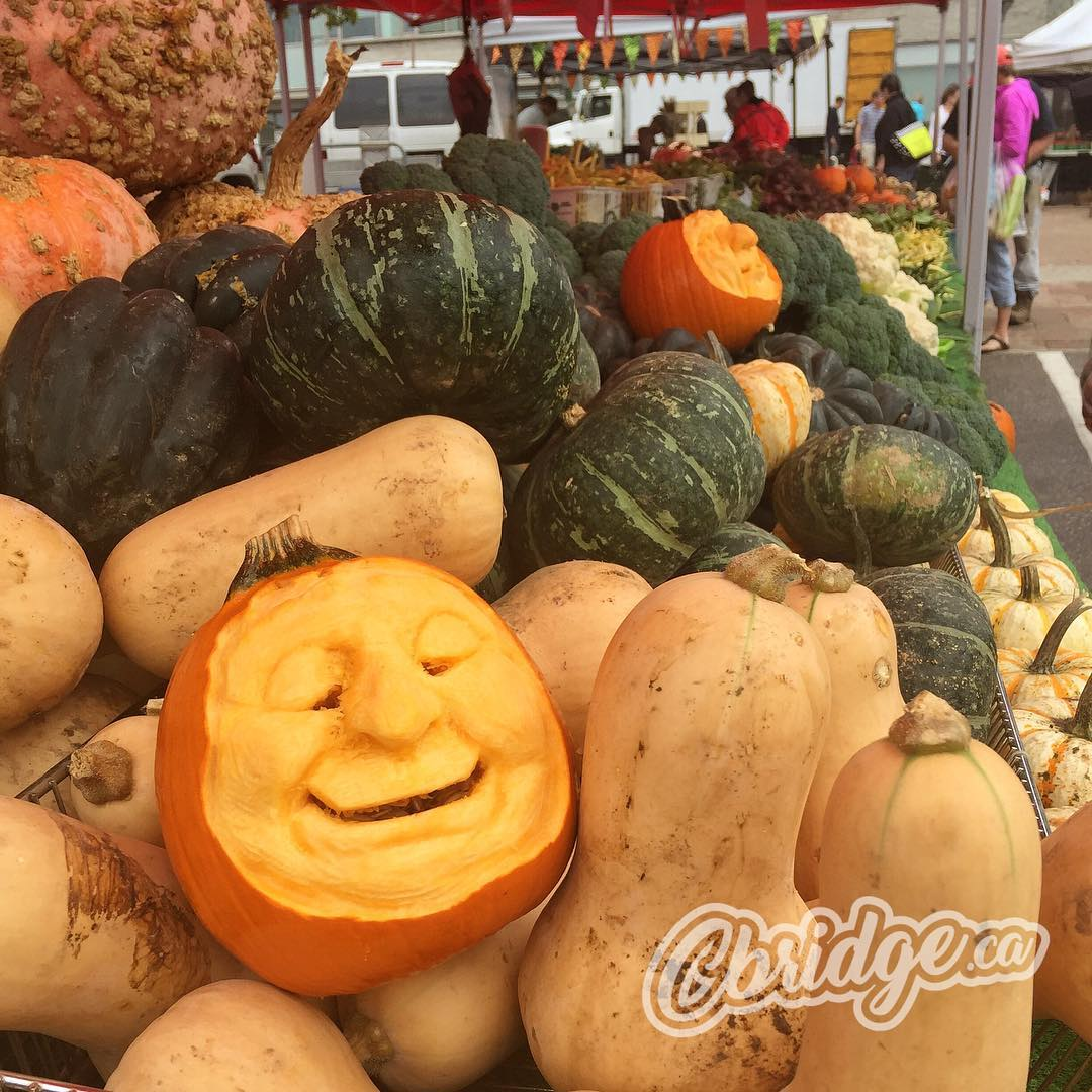 It's a Family Harvest Celebration at the Cambridge Farmers Market #mycbridge #pumpkincarving #cbridge