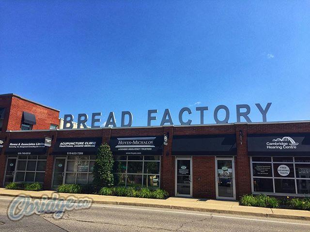 The Bread Factory: where you can't buy bread #cbridge #galtlove
