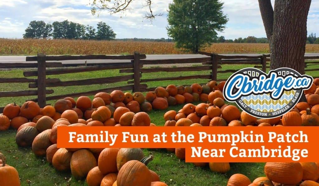 Family Fun at the Pumpkin Patch Near Cambridge Ontario