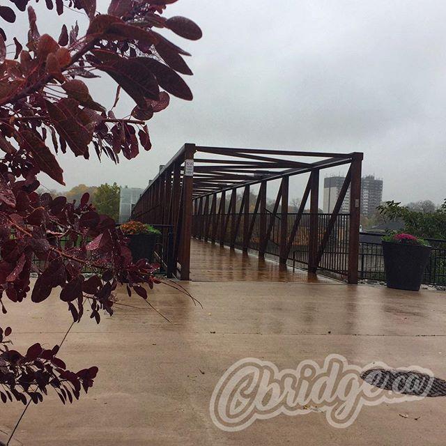 Wet day for walking #cbridge