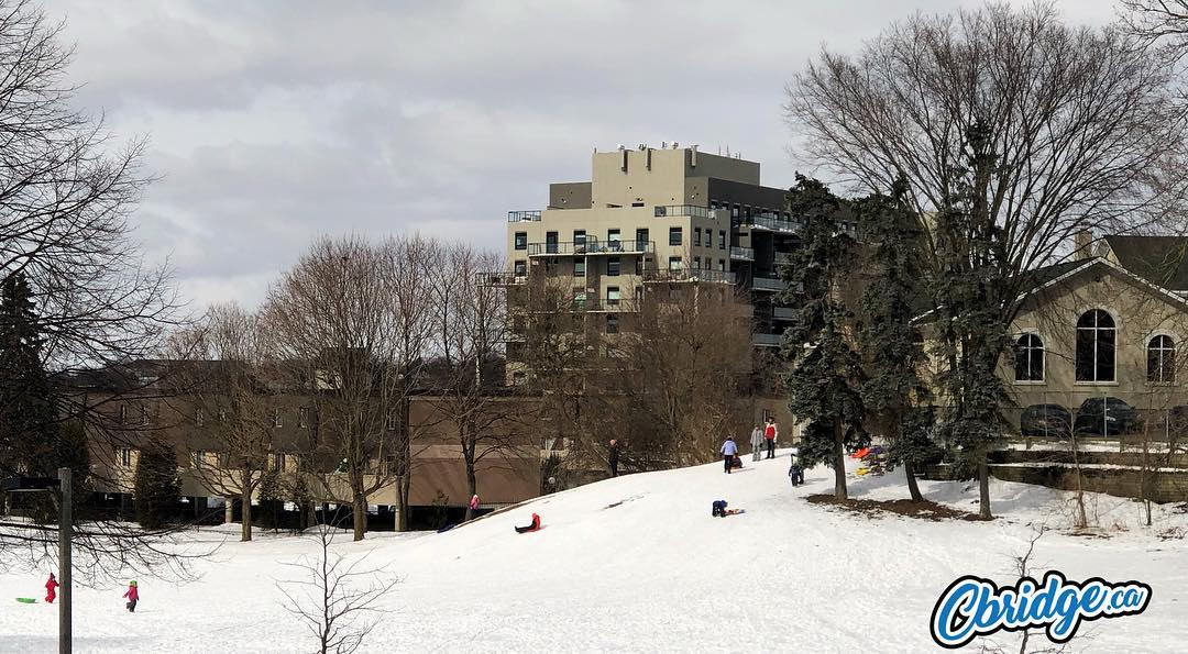 Sledding in Hespeler #cbridge #watreg